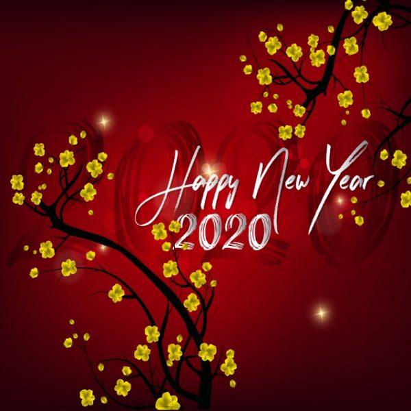 nhung-hinh-anh-tet-chuc-mung-nam-moi-2020-dep-nhat-35express-6