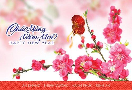 nhung-hinh-anh-tet-chuc-mung-nam-moi-2020-dep-nhat-35express-2