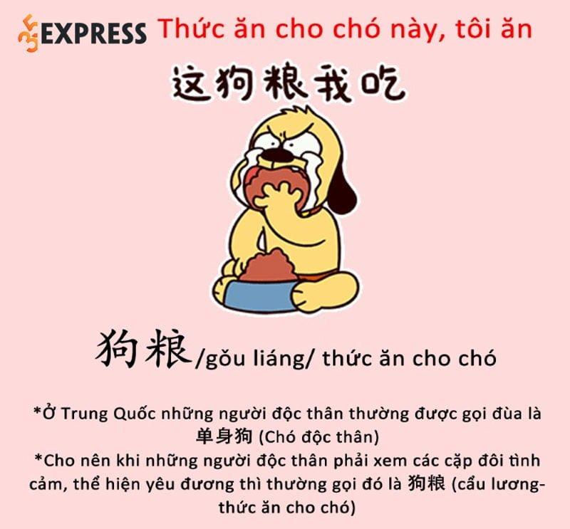y-nghia-cua-cau-luong-com-cho-hay-com-tro-la-gi-35express