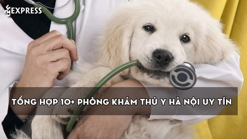 tong-hop-10-phong-kham-thu-y-ha-noi-uy-tin-va-chat-luong-1