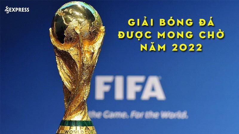 nhung-giai-bong-da-duoc-mong-cho-vao-nam-2022